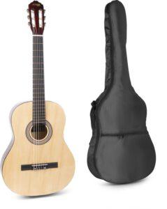 gitaar beginners